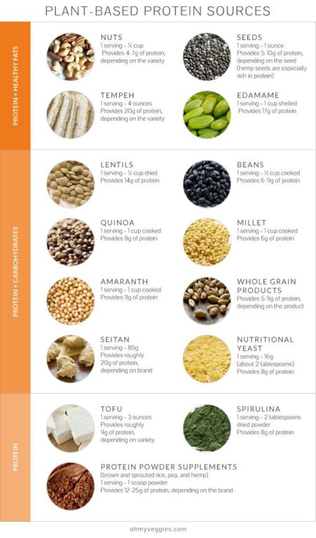 High-Protein and Low-Carb Vegetarian Foods